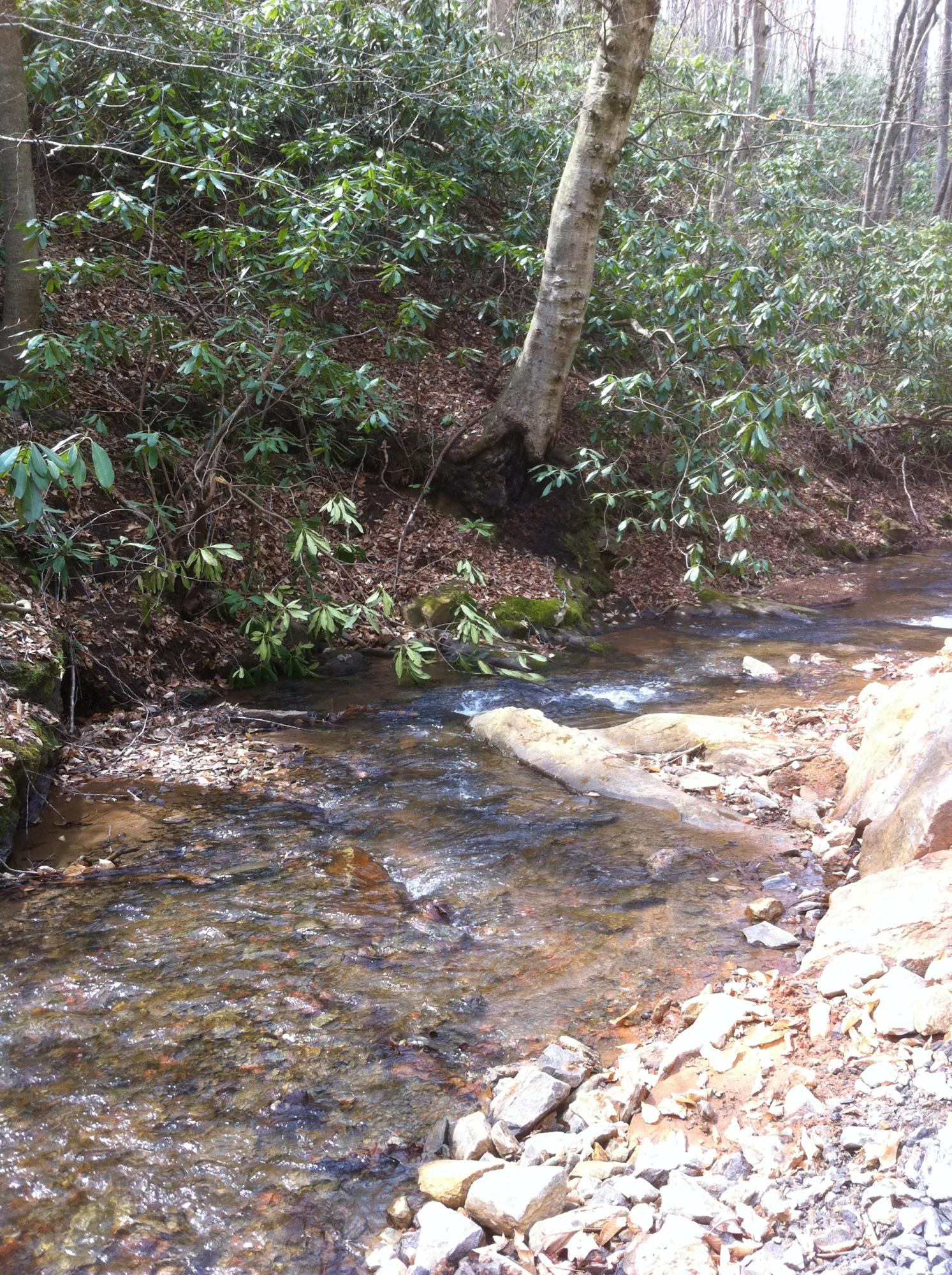 Nothing like the sound of a  babbling creek
